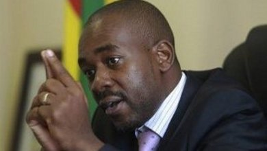 Photo of FRUSTRATED ZIMBABWE SOLDIERS BLAST MDC ALLIANCE LEADER NELSON CHAMISA