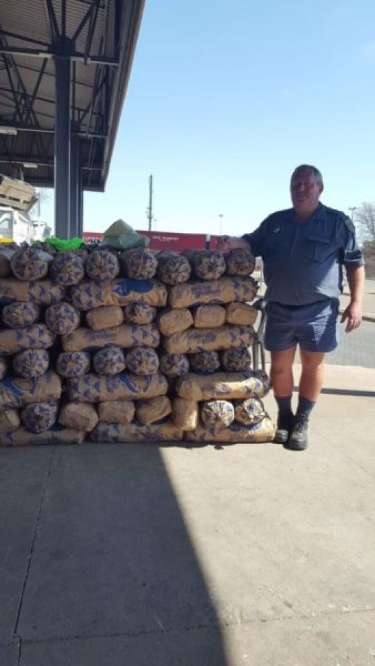 R6M ABALONE BOUND FOR ZIM SEIZED