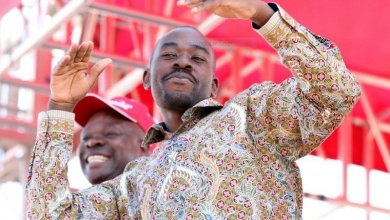 Photo of Chamisa promises fireworks soon-after MDC Congress
