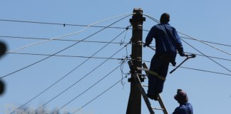 zesa-workers-power