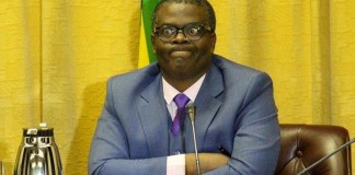 Minister Fortune Chasi