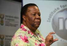 SA Minister says South Africa Is Benefiting From Zimbabwe Economic Collapse