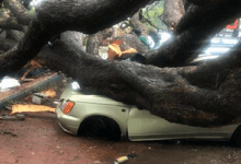 Photo of Heavy Rains Claims Two Lives In Harare