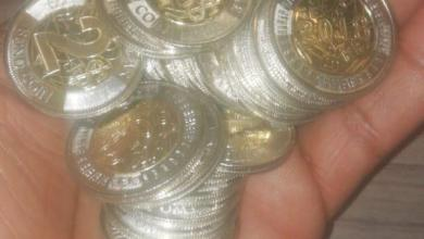 Photo of New Zim Two Dollar Bond Coins Hit The Streets