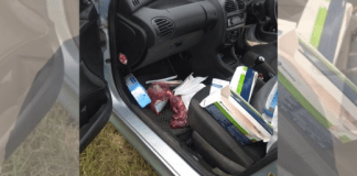 South African Nurse Busted With Human Organs In Car!