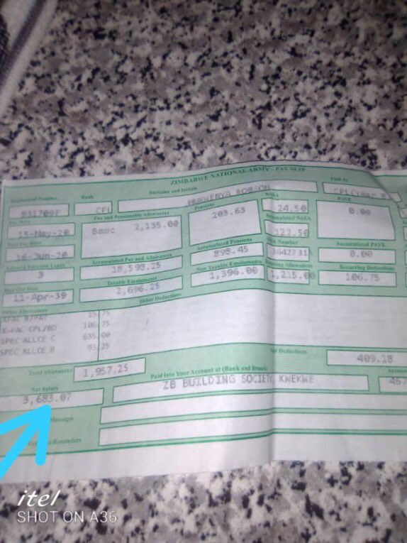 """This is how much they earn for beating up citizens: """"Zimbabwe Soldier's Payslip"""""""