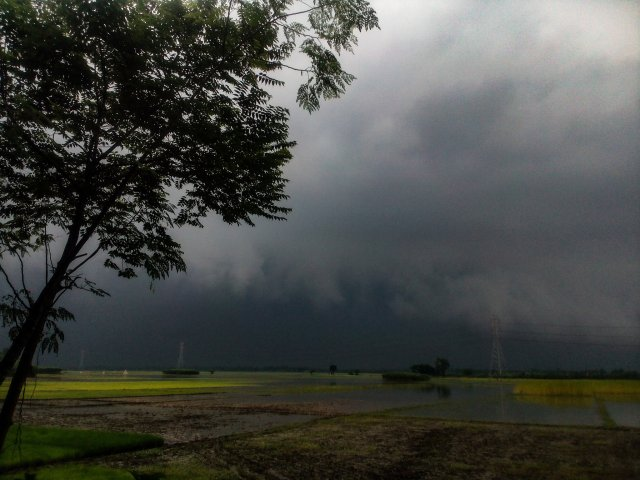 'STAY INDOORS!' . . . thunderstorms expected