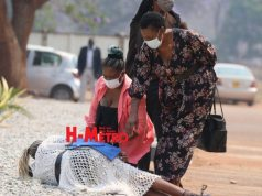 Pictured - Chiwenga's ex-Wife collapses at court!