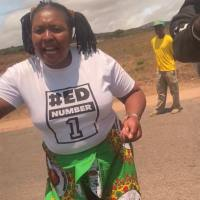 PICTURES- Armed Zanu Pf Stalwarts Block President Nelson Chamisa At The Troutbek Turn- off