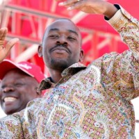 Ngaapinde Hake Mukomana , Declares Mudzuri