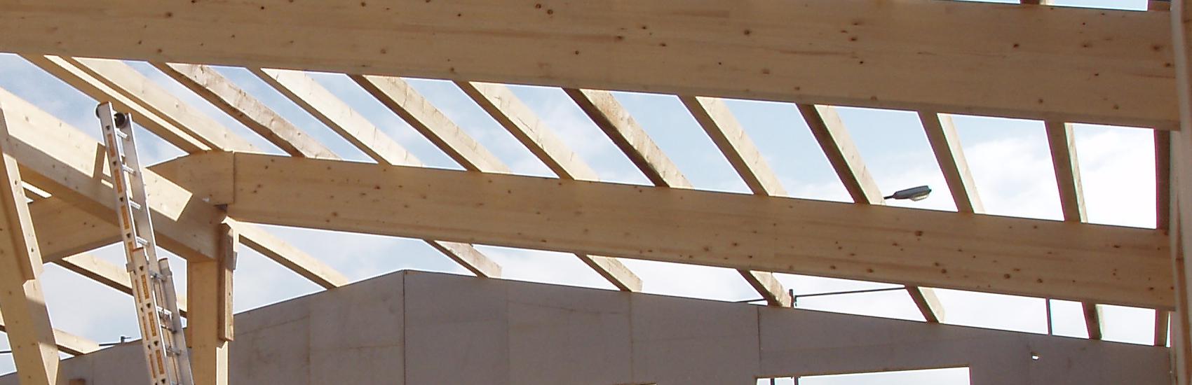 Hallenbau Dachkonstruktion