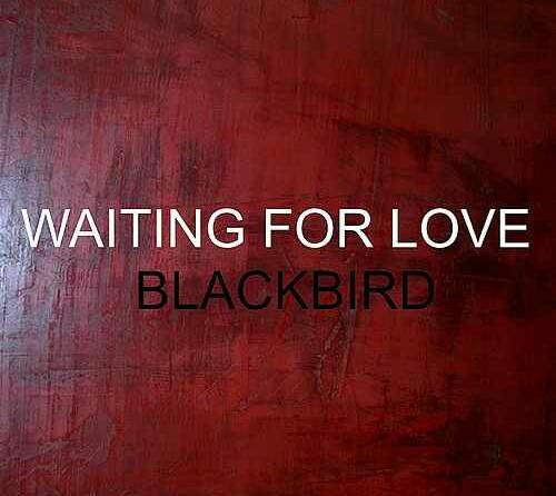 Black Bird – Waiting For Love