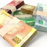 EcoCash Customers To Transact In South Africa Rand Currency