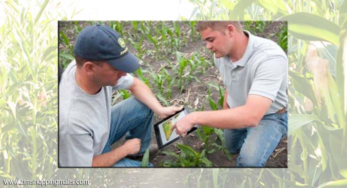 Precision Agriculture With Digital Ecosystems