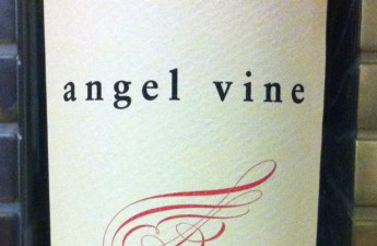 2010 Angel Vine The Hellion