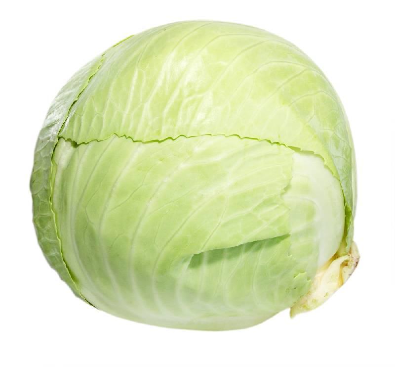Baltaguzis-kopustas Stebuklingas vertingiausių maisto produktų sąrašas. Ką valgyti sveikiausia?