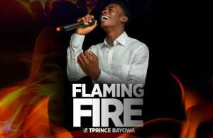 Flaming fire by tprince
