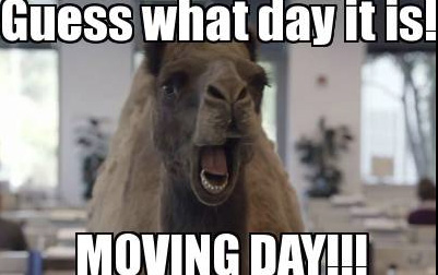 Guess what day it is moving day