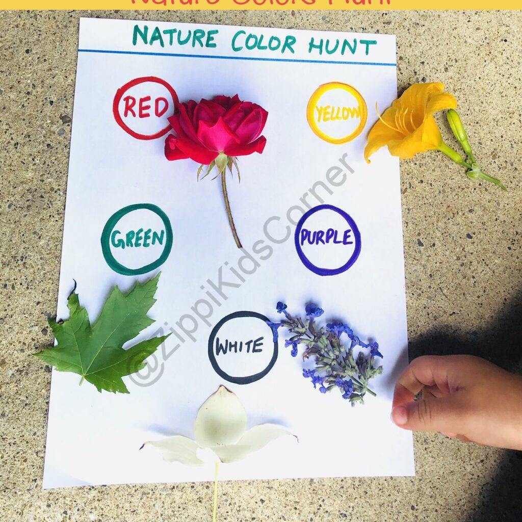 Learning With Nature Activities For Toddlers