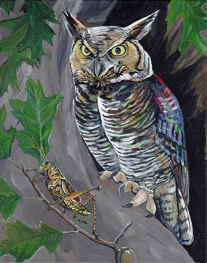 The Owl and the Grasshopper