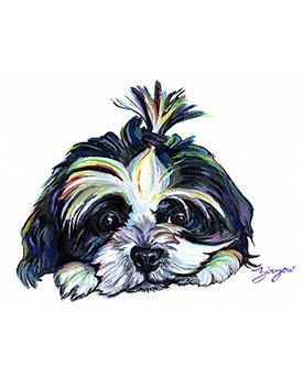 Shih-tzu Rainbow Pet Painting by Amanda Zirzow