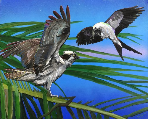 The Osprey and the Kite