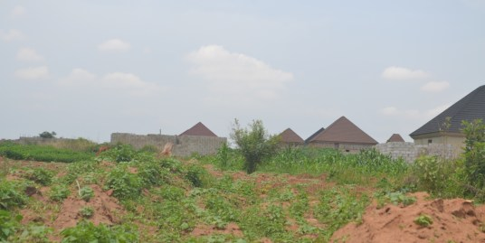 513sqm RESIDENTIAL LAND IN LUGBE