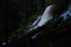 Photo taken by Texas SEO consultant at Clearwater Falls in Oregon