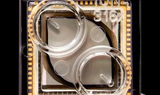 The 100 Mb Ion 316 semiconductor sequencing chip released in July 2011