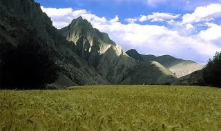 A Himalayan landscape