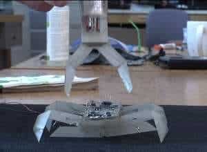 The origamiesque robots made at MIT, the crawler (down) and gripper (up), which promise to be first in a new line of easy to produce, printable bots.