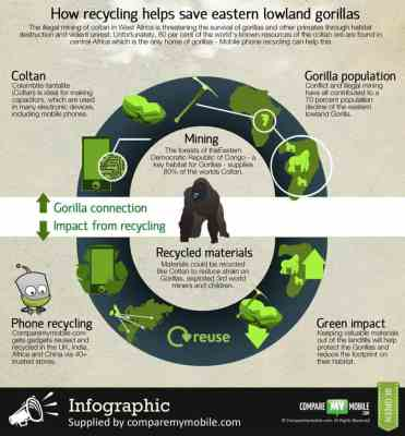 Infographic phone recycling