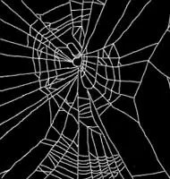 Spider web on speed - it looks a little better than on caffeine.