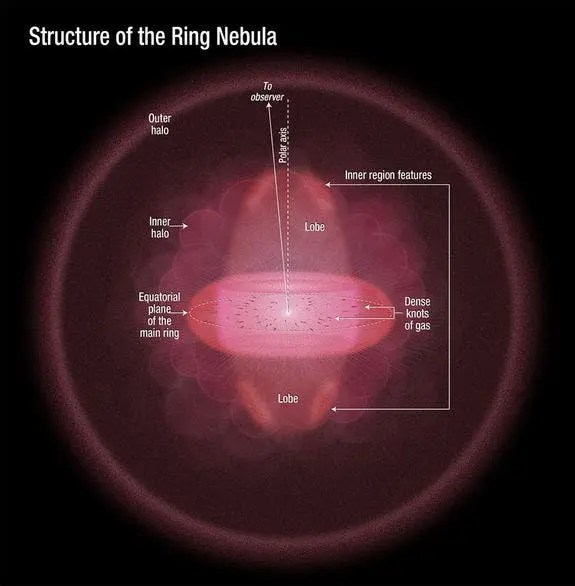The doughnut-shaped feature in the center of the graphic is the main ring. The lobes above and below the ring comprise a football-shaped structure that pierces the ring. Dense knots of gas are embedded along the ring's inner rim. Illustration courtesy of NASA