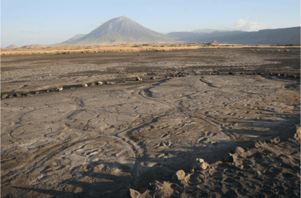 The amazing Engare Sero footprints with the 'Mount of God' in the background. Credit: Liutkus-Pierce et al., 2016