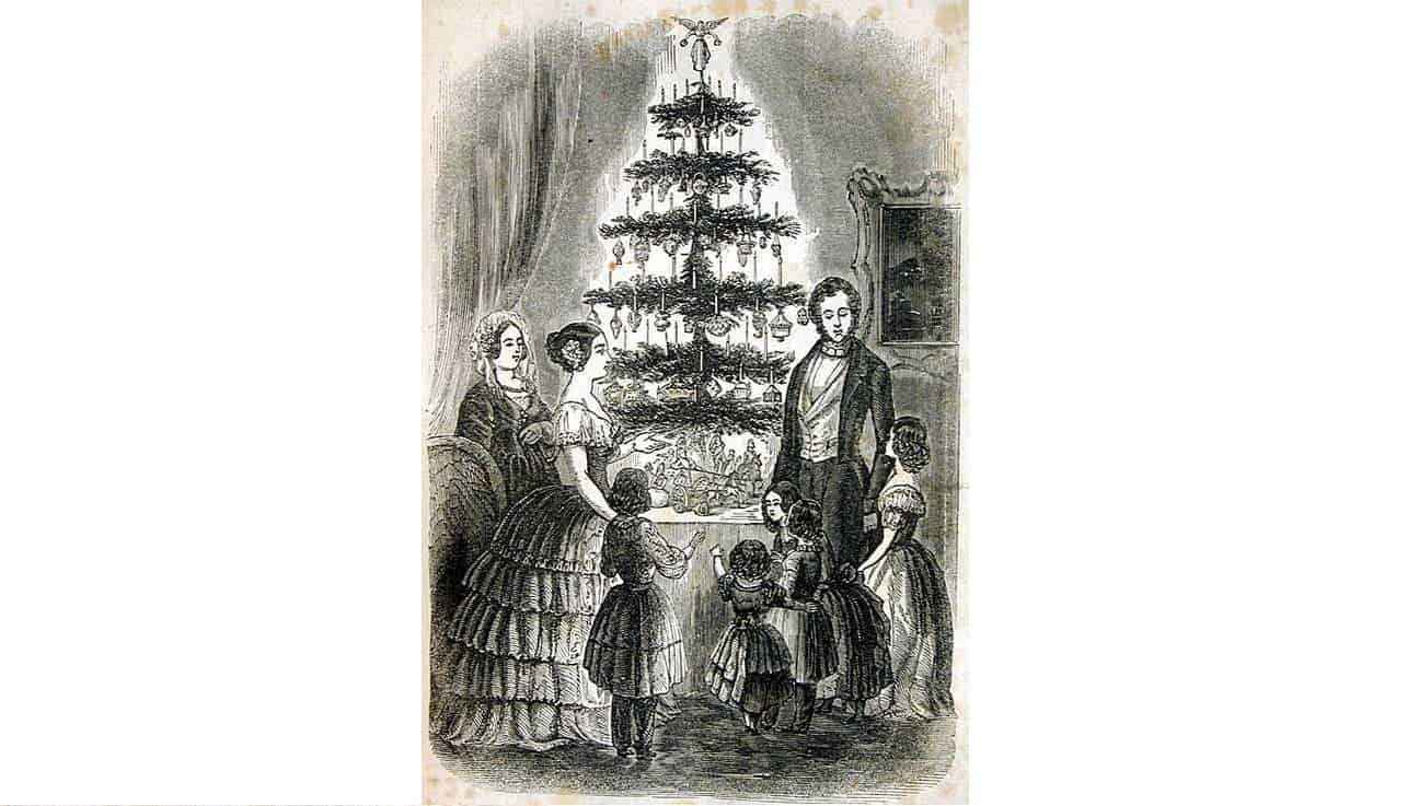 The Origin Of The Christmas Tree: From Paganism To Modern