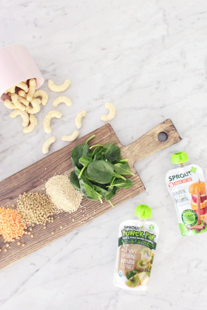 The Best Plant Based Snack Options for Babies & Toddlers