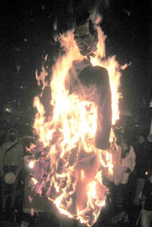 burning bush kaufen # 43