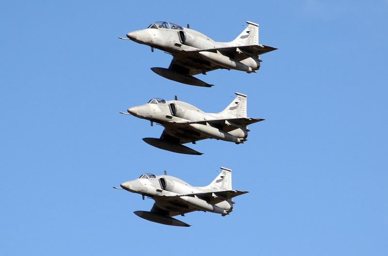 Multitud en el Desfile Aéreo