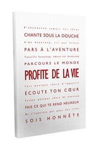 Feel Good Art Profite de la Vie Toile sur Cadre Mural de Style Moderne/Typographique Rouge/Blanc 30 X 20 cm