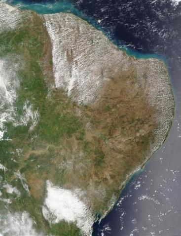 https://i2.wp.com/www.zonu.com/imapa/americas/small/Map_Satellite_Photo_Image_Brazil.jpg?resize=367%2C478&ssl=1