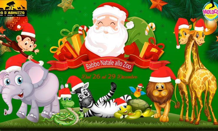 Babbo Natale allo zoo