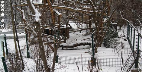 Die Urson-Anlage mit dem neuen Zaun, 19. Dezember 2009
