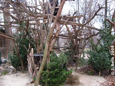 Urson-Anlage, 29. Dezember 2009