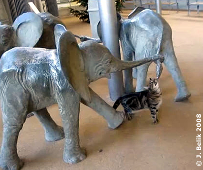 Elefanten-Skulpturen mit Lilli, Besucherbereich, 25. Dezember 2008