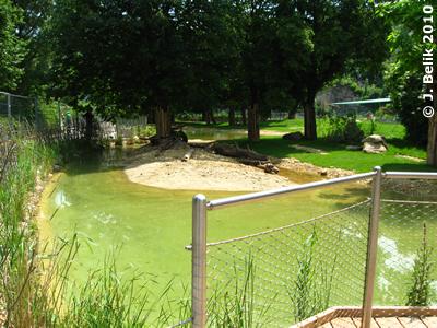 Blick auf den Teich in der Südamerika-Anlage, 8. Juni 2010