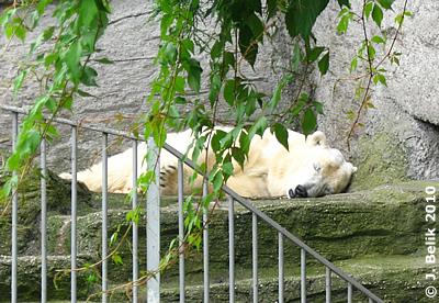 ... und weg war sie, Tania, 22. Juni 2010