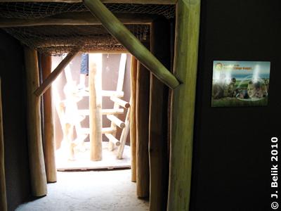 Zugang zur Beobachtungskuppel, 2. Juli 2010