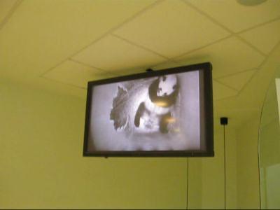 Auf dem Monitor werden Videos, aber keine Live-Bilder aus der Wufbox gezeigt, 27. August 2010