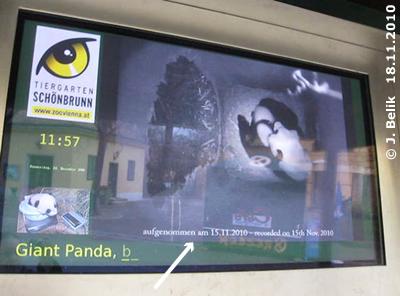 Nun steht am unteren Rand, wann die Videosequenzen aufgenommen wurden, 18. November 2010